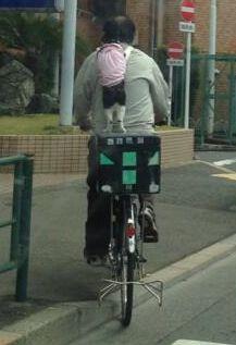 おじさんの後ろに猫が立ち乗りしてる様子が激写される!コレは凄いわwww : ぶる速-VIP