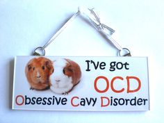 OCD funny LOVE CAVY Guinea Pig Plaque Sign friend family GIFT IDEA Hutch bedding