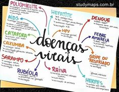 School Motivation, Study Motivation, Mental Map, Biology Lessons, Study Organization, Study Planner, Lettering Tutorial, School Notes, Study Notes