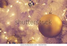 Find Christmas Ornaments Gold Ball Light Bulb stock images in HD and millions of other royalty-free stock photos, illustrations and vectors in the Shutterstock collection. Thousands of new, high-quality pictures added every day. Christmas Ad, Christmas Bulbs, Ball Lights, Light Bulb, Photo Editing, Royalty Free Stock Photos, Holiday Decor, Pictures, Image