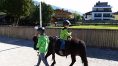 Spaß am Pony   #fun #riding