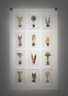 steffen Dam Glass artist-