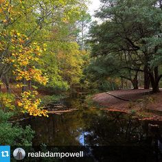 Sesquicentennial State Park showing off some fall color in Columbia, SC