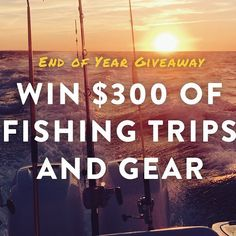 Another contest? Hell yeah. We're going to squeeze in one more giveaway before 2016 gets here. Just drop us your email and you're in the running! Link in profile. #fishing #giveaway #amberjackoutfitters - Book your next fishing trip on Amberjack.com today.