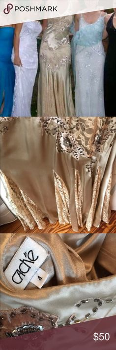 Cache gown Cache gown - champagne - size 4 - silk and lace - low back - halter - only worn once - STUNNING for wedding or prom Cache Dresses Second Hand Wedding Dresses, Champagne, Sequin Skirt, Sequins, Prom, Gowns, Silk, Lace, Fashion
