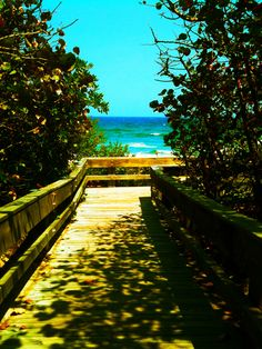 my favorite place in the world. Boca Raton, Florida