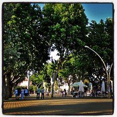 #Alameda de #Hércules, #Sevilla - El #jardín público más antiguo de #España y #Europa.