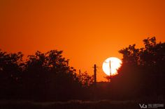 Apus Celestial, Sunset, Landscape, Outdoor, Outdoors, Scenery, Sunsets, Outdoor Games, The Great Outdoors