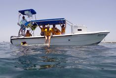 Mexico City Tours, Web Tour, Holiday Packages, Boat, Vacation, Travel, Dinghy, Vacations, Viajes