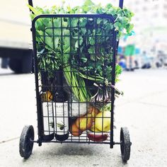 Friends who fill their baskets @morningsidefarmersmarket #inthahood  Gabbigotthegreensville