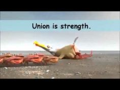 The Power of Union is Strength Crabs VS Ants VS Penguins Advertisement. Top Videos, Great Videos, Inspirational Videos For Students, Robert Oppenheimer, Together We Stand, Feel Good Friday, Divided We Fall, Teaching Social Skills, Great Presentations