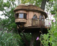 tree house  http://abitarelanatura.wordpress.com/