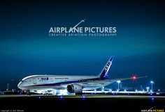 ANA - All Nippon Airways Boeing Dreamliner photo by Sho Tamura Boeing 787 Dreamliner, Boeing 787 8, Ana Airlines, International Airlines, Passenger Aircraft, Air Photo, Aircraft Photos, Airplane, Turtle