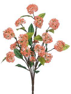 Coral Viburnum Bush | Wedding Decoration Ideas | Afloral.com