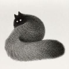 Cat illustration by Kamwei Fong #CatIllustration