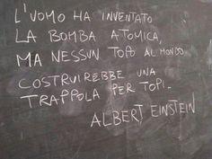 Albert Eintein Quotes L'uomo Guerra