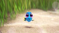 『ファインディング・ドリー』に登場するベビー・ドリー (C)2016 Disney/Pixar. All Rights Reserved.