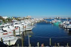 Things to do in Destin, FL: Travel Guide from 10Best