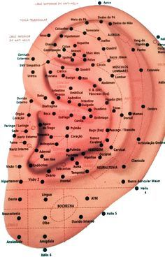 """Another """"Minute Massage Magic"""" with the humble tennis ball! Ear Piercings, Piercing Chart, Facial Piercings, What Is Biology, Branches Of Biology, Reflexology Massage, Acupuncture Points, Alternative Therapies, Traditional Chinese Medicine"""