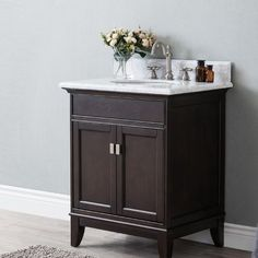 "Latitude Run Hynes 28"" Single Bathroom Vanity Set"