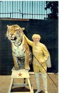 Courtesy of Arcadia Publishing Famous tiger trainer Mabel Stark poses with one of her beastly friends in this late 1930s photo at Jungleland, the animal amusement park that occupied a long stretch of Thousand Oaks Boulevard until it closed in the 1970s. Stark, who was reportedly maimed 18 times, once requiring 378 stitches, loved working with big cats. 'It's a matchless thrill,' she once said, 'and life without it is not worthwhile to me.'