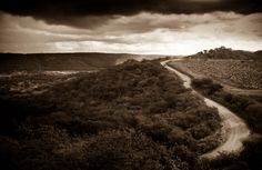 Road dream by Eduardo Vilela