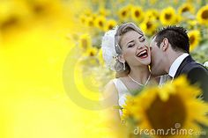 Photo about Wedding couple, bride and groom kissing in sunflower field. Image of relationship, marriage, flowers - 19904518 Wedding Couples, Wedding Bride, Wedding Day, Sunflower Field Photography, Wedding Photography Tips, Photography Business, Photography Ideas, Yellow Wedding, Newlyweds