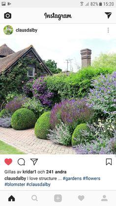 english garden All greens and lavenders, Back Gardens, Small Gardens, Outdoor Gardens, Lavender Garden, Mediterranean Garden, Garden Architecture, Garden Borders, Dream Garden, Garden Planning