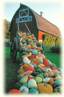 Seed Savers Exchange - Heritage Farm  Save #seeds #gardenchat #foodchat