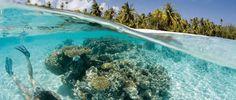 Vakantie Frans-Polynesië - Rondreizen Frans-Polynesië | Pacific Island Travel