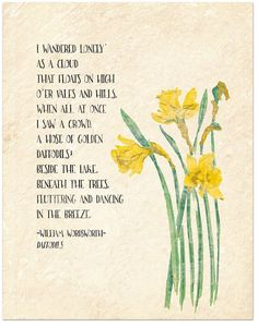 Golden Daffodils – William Wordsworth Inspirational Literary Quote from Daffodils. Fine Art Paper, Laminated, or Framed. Multiple Sizes Available For Classroom, Library, Home or Nursery – Famous Last Words Wordsworth William, Daffodils William Wordsworth, Writers And Poets, Poem Quotes, Life Quotes, Rumi Quotes, Heart Quotes, Nature Quotes, Quotes Positive
