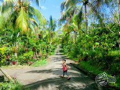 2018年7月30日(月)バリ島ウブドのお天気は晴れ。室内温度27.0℃、湿度73%。雨が止みキラキラの太陽が顔を出すと、植物が一段と生き生きしてきたみたい。空気も美味しく感じます♪ #今日も良い日になりますように #バリ島 #ウブド #散歩 #雨上がり #深呼吸 #自然