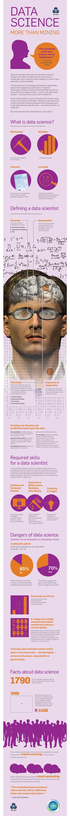 Data Science: More Than Mining Infographic
