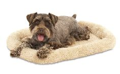 Aspen Pet Bolster Style Kennel Mat -- Continue to the product at the image link. (This is an affiliate link and I receive a commission for the sales)