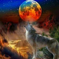 Gute Nacht und süße Träume, ist eine wunderbare ruhe und Klang der schönsten, schöne sonnenaufgänge, sie alle segnungen des herzens wollen 😴🌠🌌🌋👌💤👼😇😴 #GuteNacht #süßeTräume  #wunderbare #Ruhe #schönsten #schöne #sonnenaufgänge  #segnungen  #herzens