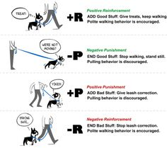 Punishment and negative reinforcement essay