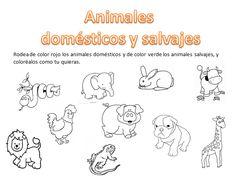 Dibujos Para Colorear De Animales Domesticos Y Salvajes Animales Salvajes Para Colorear Actividades De Los Animales Animales Salvajes Para Ninos
