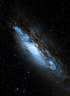 NGC 660 is a rare type of galaxy called a polar ring galaxy.