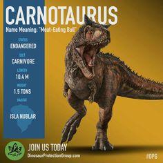 Help save the Carnotaurus of Isla Nublar! Jurassic World Fallen Kingdom - Dinosaur Protection Group