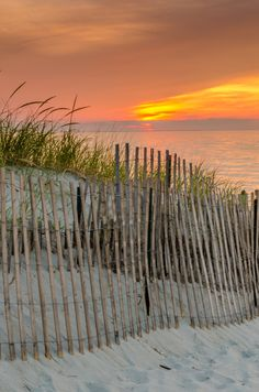 When I think of Cape Cod beaches, I always see scenes like this - the fence that lines the walkway down to the beach.