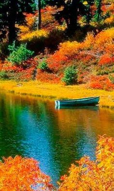 Fall colors and little green boat.