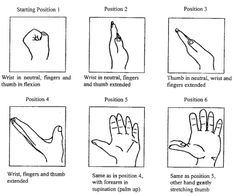 Nerve glide exercises that may prevent carpal tunnel surgery Carpal Tunnel Surgery, Carpal Tunnel Relief, Carpal Tunnel Syndrome, Carpal Tunnel Exercises, Elbow Exercises, Stretches, Occupational Therapy, Physical Therapy, Work Related Injuries