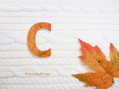 Uppercase letter C with glitter leaf and sweater knit. #fall #autumn #alphabet #typography #initial #monogram #font   maple leaf