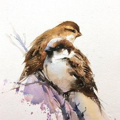 From my watercolor bird art series😊 . Watercolor Sketch, Watercolor Artists, Watercolor Bird, Watercolor Animals, Watercolor Landscape, Watercolor Illustration, Watercolour Painting, Watercolor Portraits, Watercolours