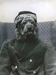 Rare Vintage Pet Photos - Mindless Mirth