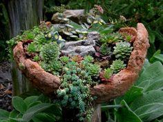 Gartengestaltung mit winterharten Pflanzen bunt gebirgen