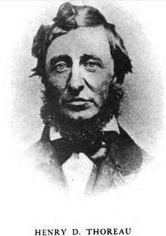 38 Henry David Thoreau Ideas Henry David Thoreau Thoreau Walden Pond