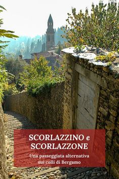 Like A Local, Travel Tours, Fresh Water, Places To See, Pond, Mount Rushmore, Swimming Pools, Italy, Mountains