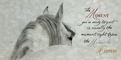 The Moment Your Ready White Horses 16x28\  by Summer Snow