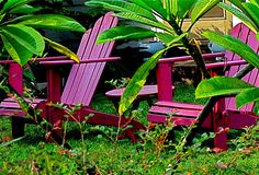 Adirondack chairs (in any color that suits you)